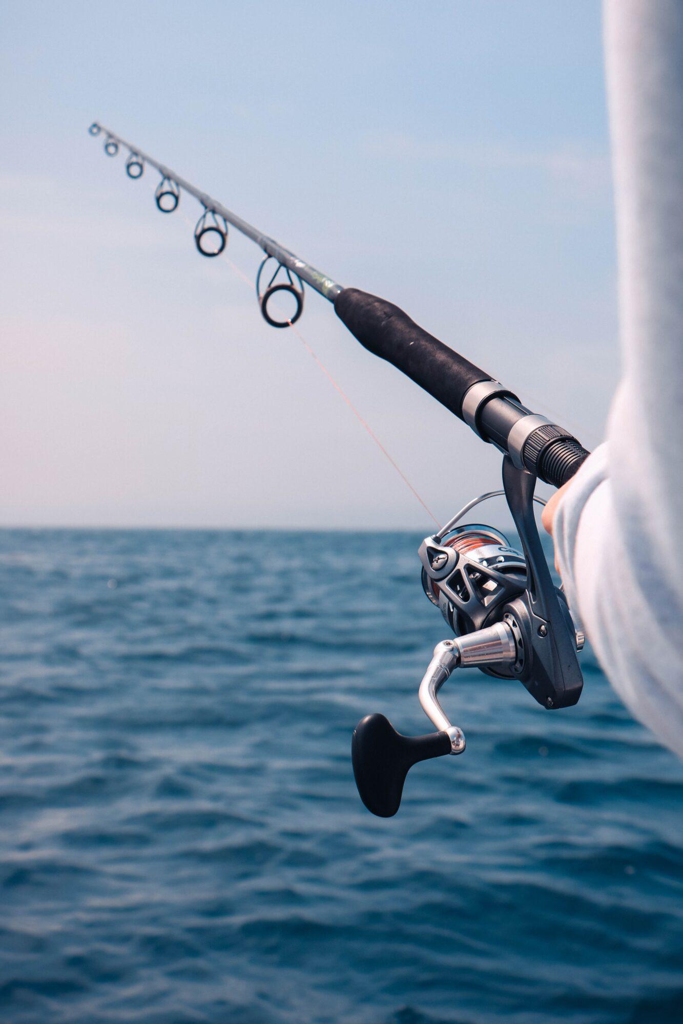 Fiskestænger tilbud – spar penge på dit fiskeudstyr